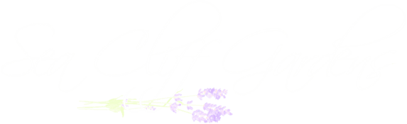 Sea Cliff Gardens Bed And Breakfast In Port Angeles Washington